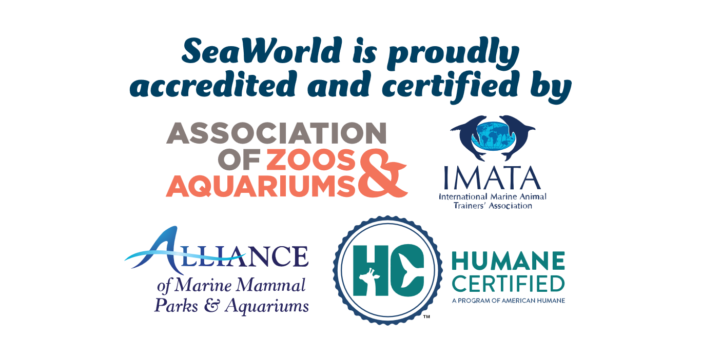 SeaWorld Accreditation