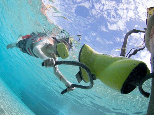 Adventure Island VR Snorkeling