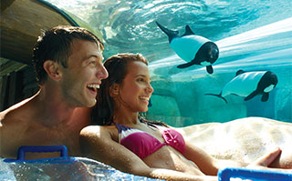 Visit Aquatica in Orlando, Florida