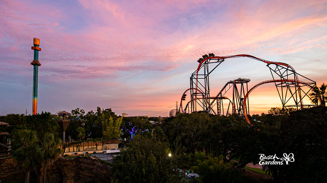 Busch Gardens Sunset Video Conference Background Preview