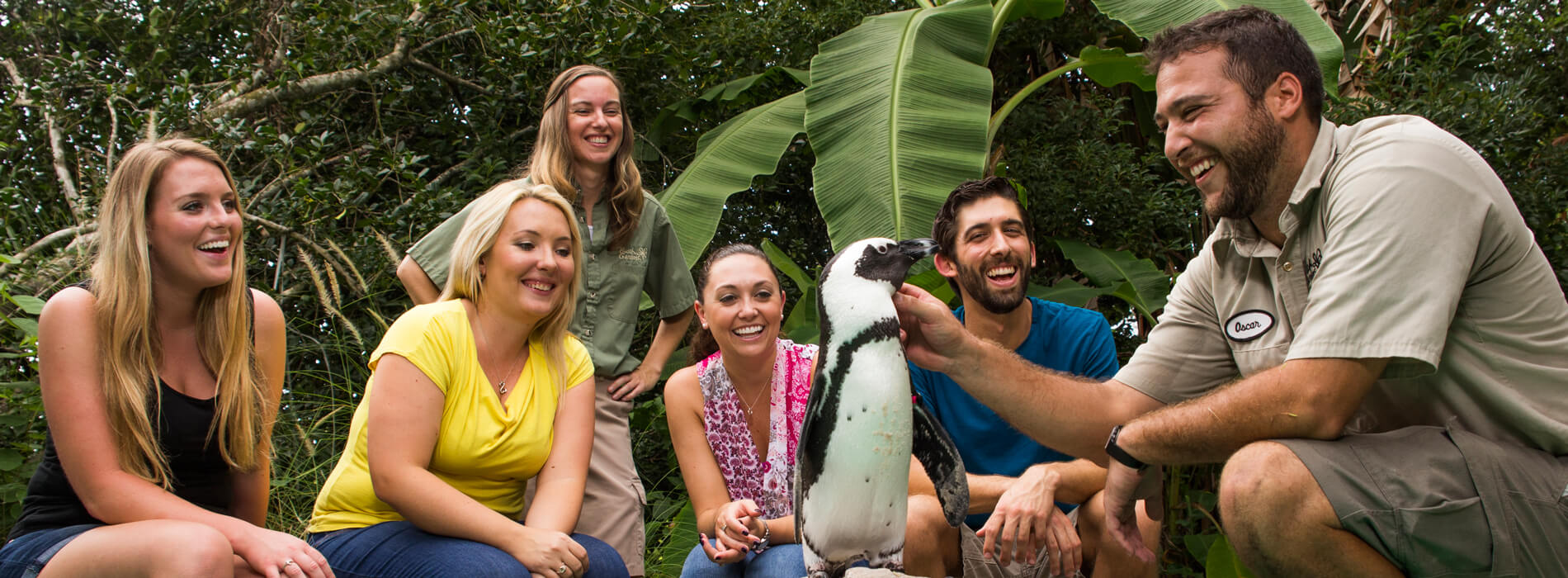 Get up close and interactive with the penguin insider tour