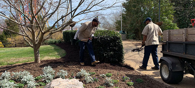 Mulching with recycled wood chips