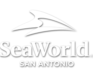 Howl-O-Scream at SeaWorld San Antonio