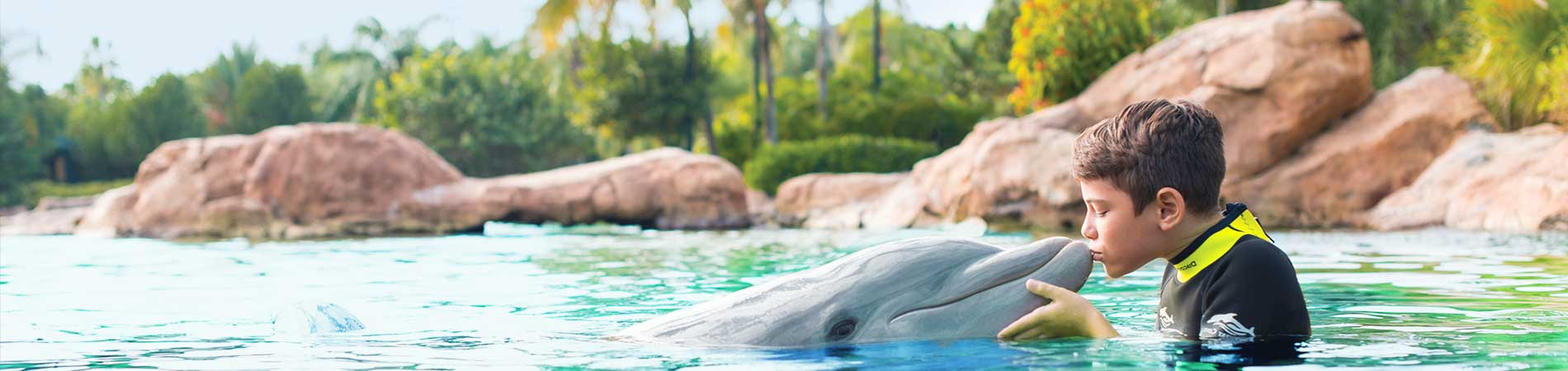 discovery-cove-dolphin-encounter-orlando
