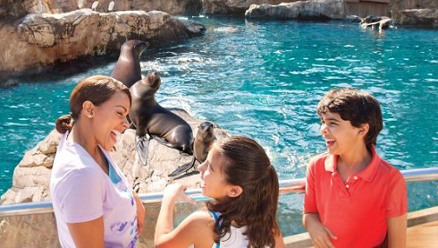 Visit SeaWorld San Antonio