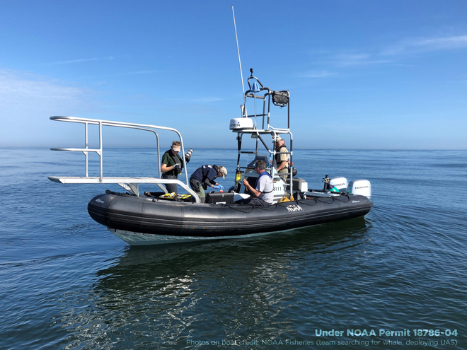 A boat with Marine Scientists performing research
