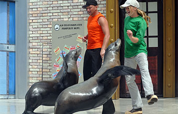 Animal Trainer with Sea Lion