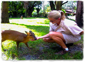 A Busch Gardens keeper holds the head of a young deer.