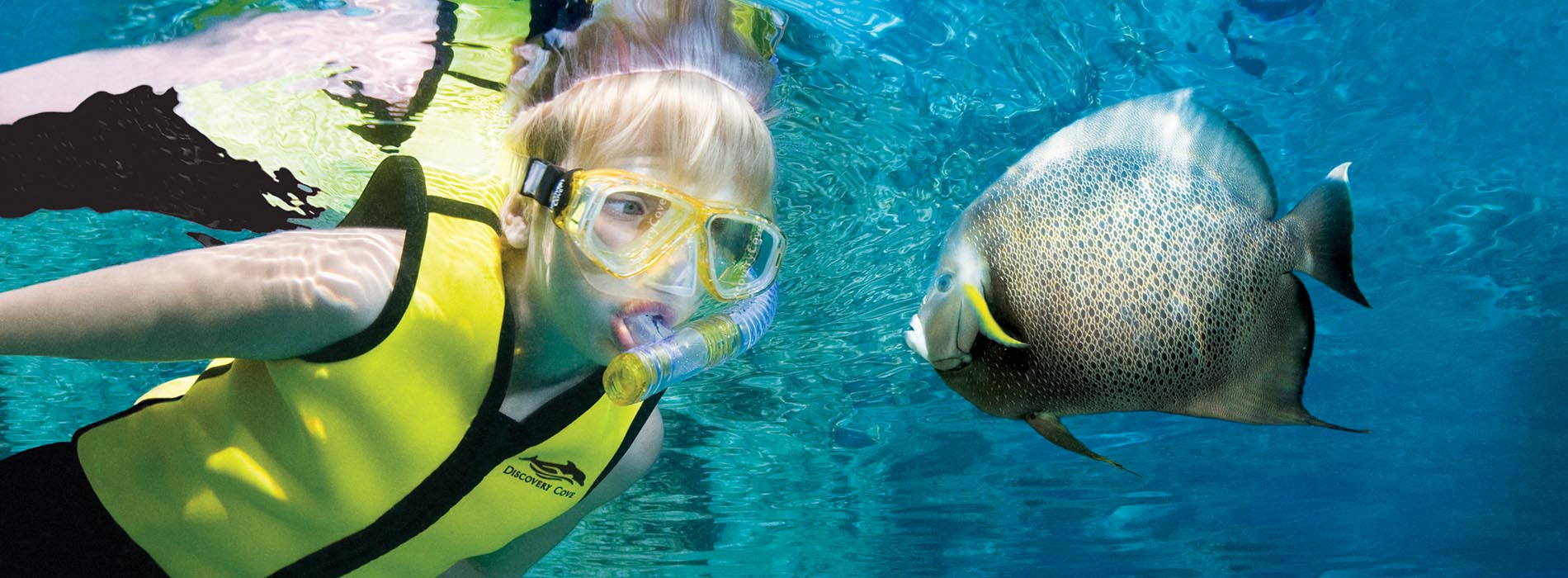 Boy snorkels with fish