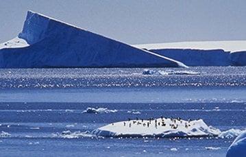 一大群企鹅在冰川上,在背景中有一个较大的冰块。