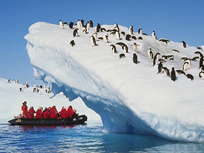 researchers observing penguins on iceberg
