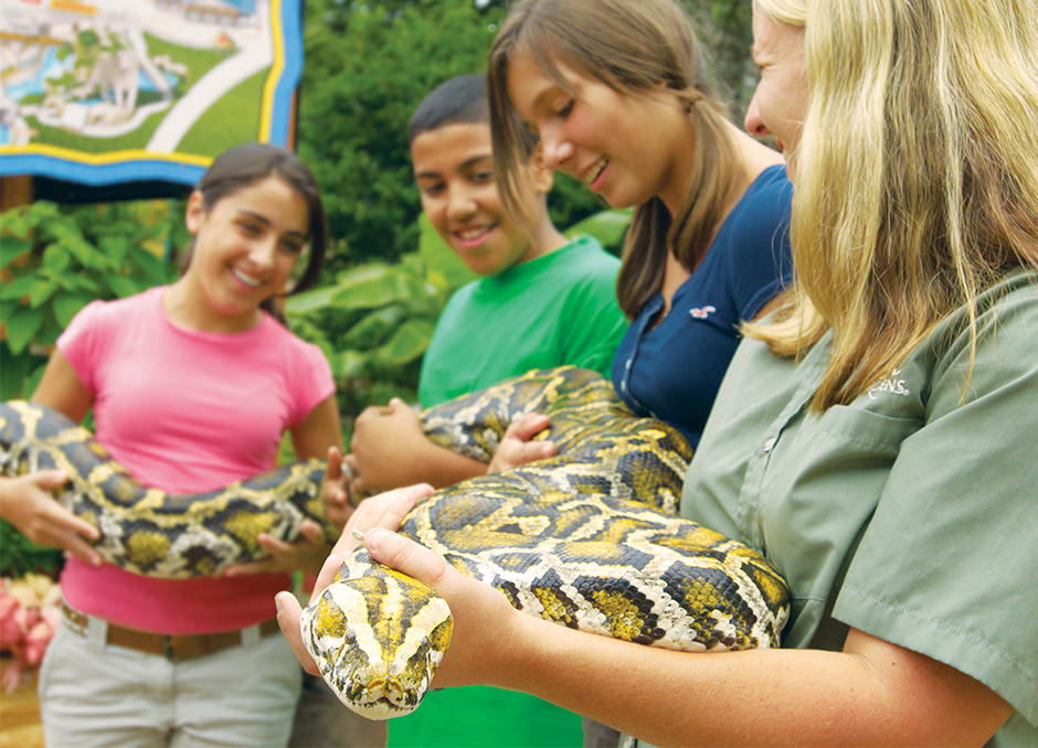 Several people hold a large snake