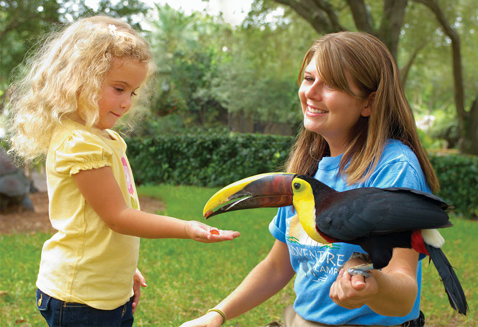 An educator holds a toucan while a girl holds her hand out to it