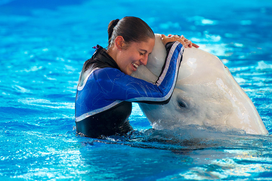 A trainer in the water hugs a dolphin