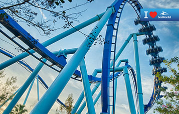 Manta Roller Coaster Background Preview