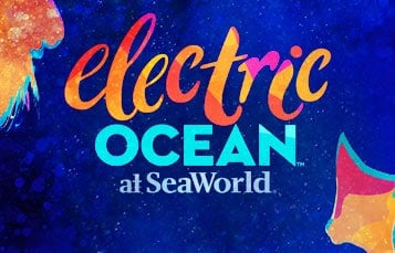 SeaWorld's Electric Ocean Summer Event