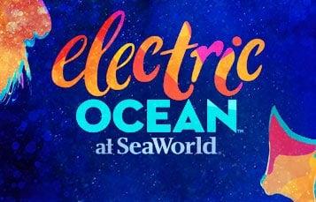 SeaWorld's Electric Ocean Summer Event