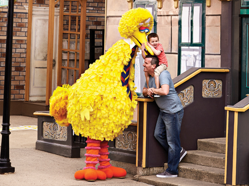 Big Bird on the Street