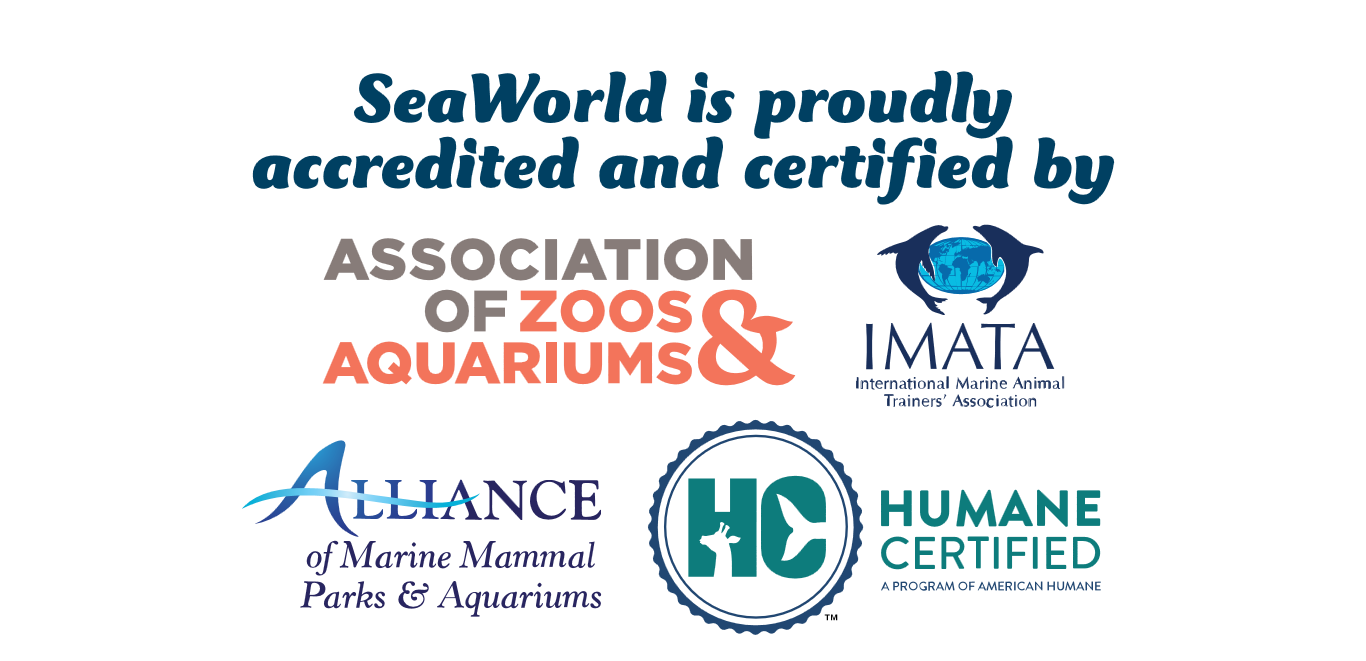 SeaWorld is proudly accredited and certified by Association of Zoos & Aquariums, IMATA, Alliance of Marine Mammal Parks & Aquariums, Humane Certified- A Program of American Humane