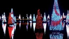 Sea of Trees at SeaWorld Orlando Christmas Celebration