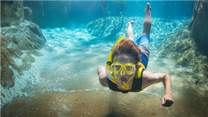 Snorkeling in Wind Away River at Discovery Cove Orlando