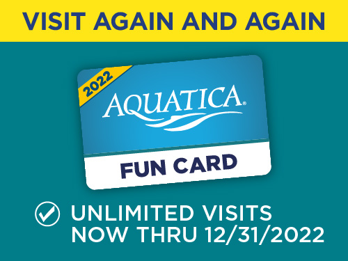 Buy a 2022 Fun Card, Get the Rest of 2021 FREE