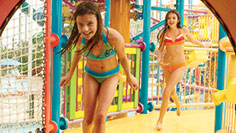 Check out kid-friendly attractions at Aquatica