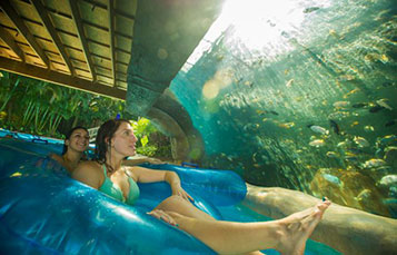 Float down the relaxing Loggerhead Lane, and even get a peek into the fish grotto at Aquatica.