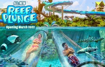 Reef Plunge at Aquatica Orlando