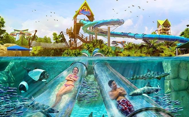 Reef Plunge Aquatica Orlando