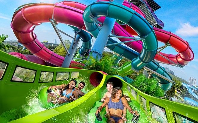 Riptide Race water slide at Aquatica Orlando