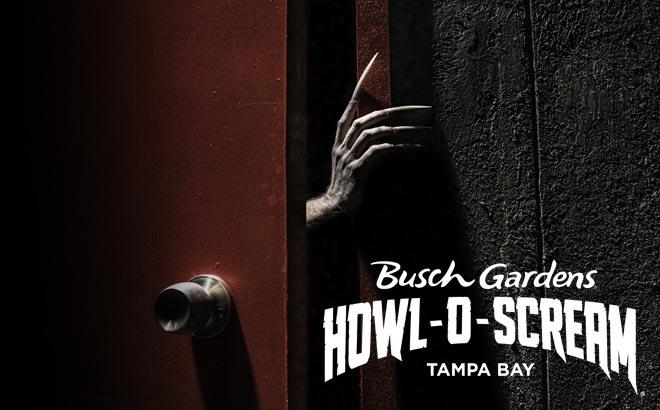 Busch Gardens Tampa Bay Howl-O-Scream