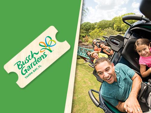 Enjoy one visit to Busch Gardens Tampa Bay