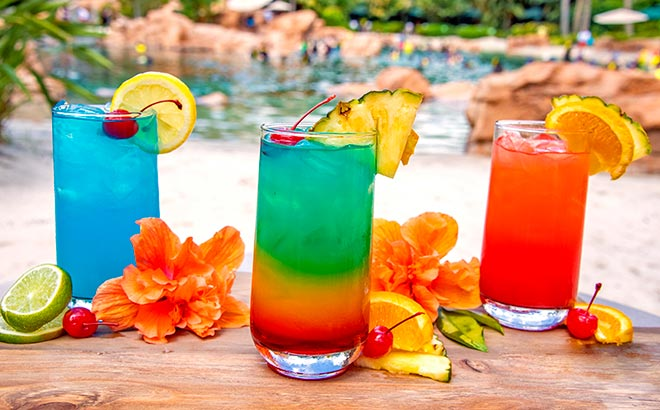 Purchase a drink package during a day at Discovery Cove Orlando