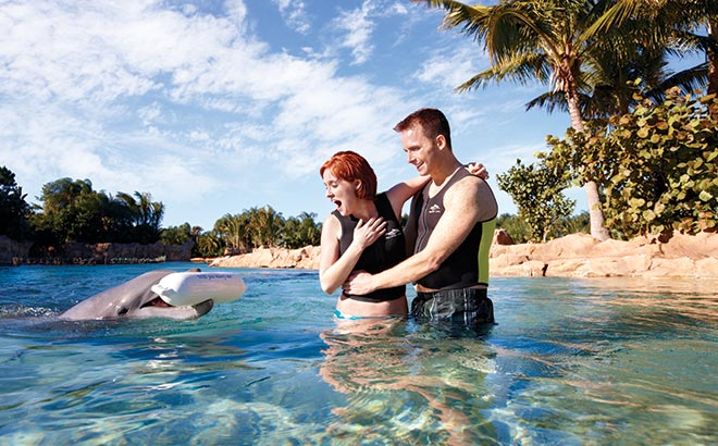 Proposal Celebration Package at Discovery Cove Orlando