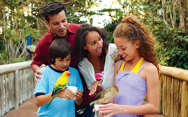 Discovery Cove Family in Aviary