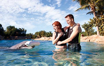 Marriage Proposal at Discovery Cove Orlando