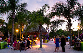 Book your Special Event at Discovery Cove Orlando