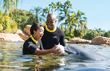 Get engaged at the romantic and memorable Discovery Cove.