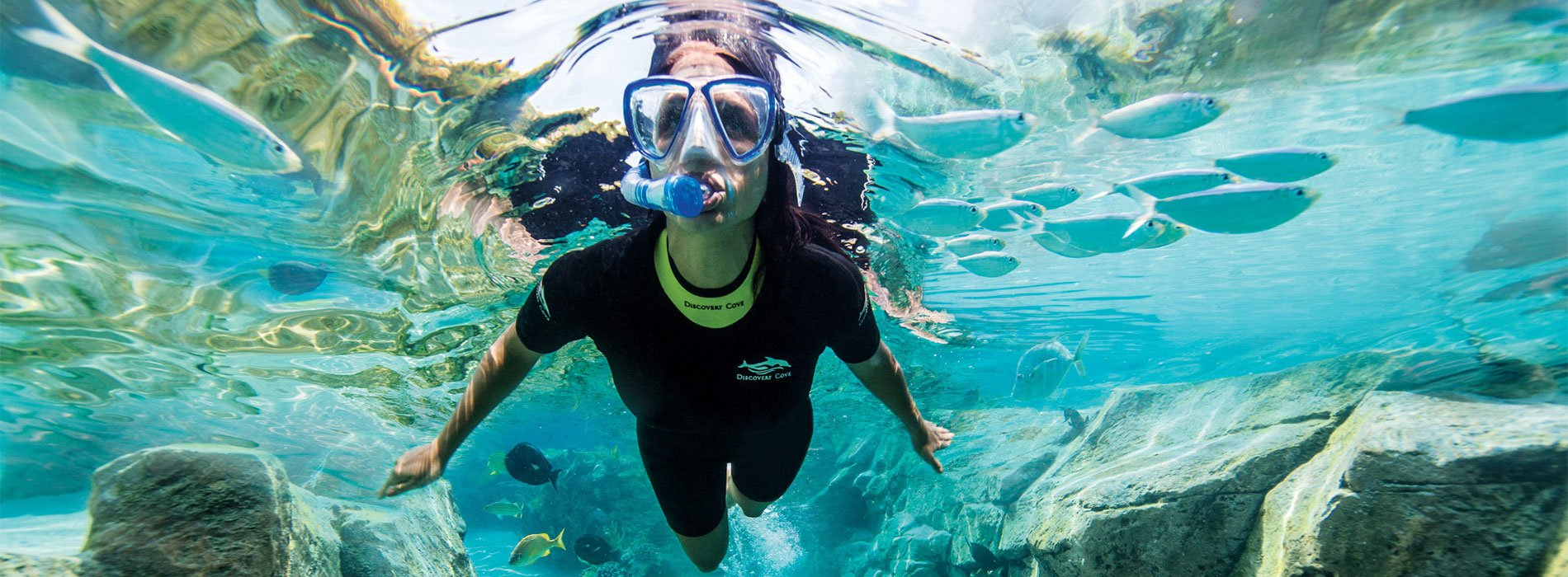 Visitor snorkeling in Discovery Cove Grand Reef Tropical Habitat