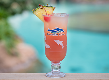 Paradise Breeze drink available at Discovery Cove Orlando