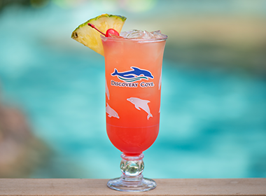 Serenity Bay Sunset drink available at Discovery Cove Orlando