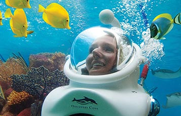 Take an underwater walking tour with SeaVenture at Discovery Cove Orlando