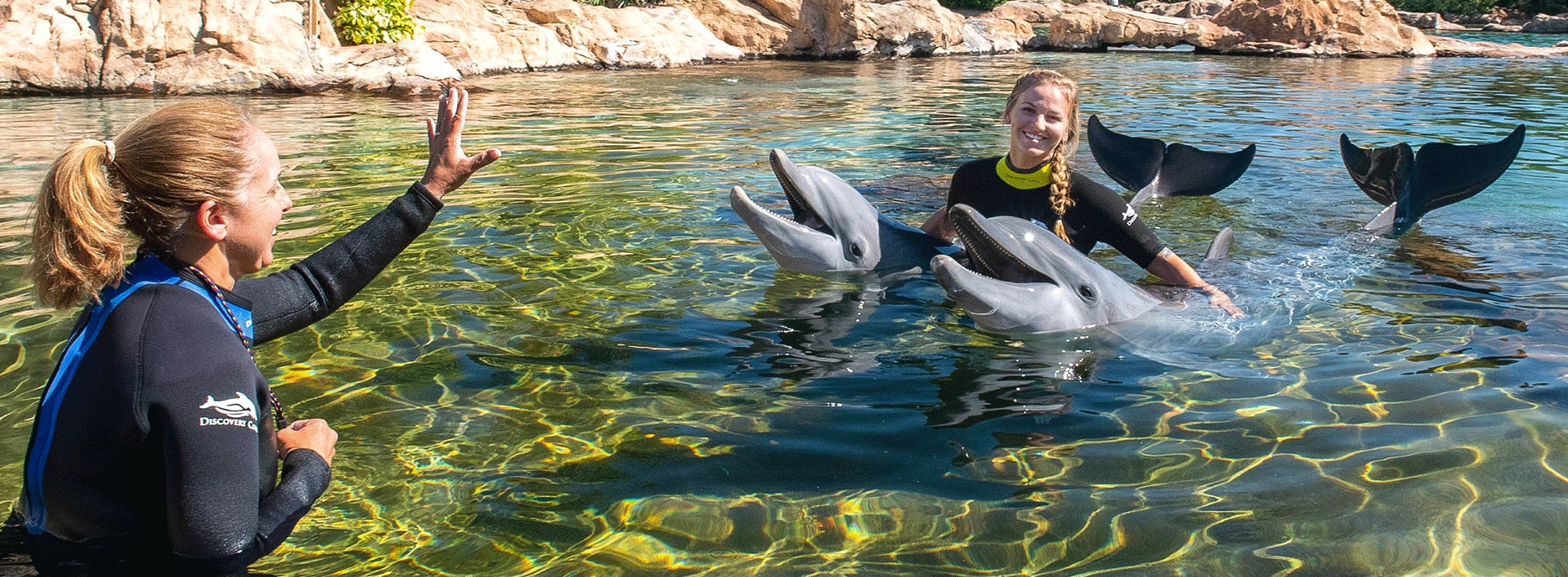 Discovery Cove Orlando Trainer for a Day