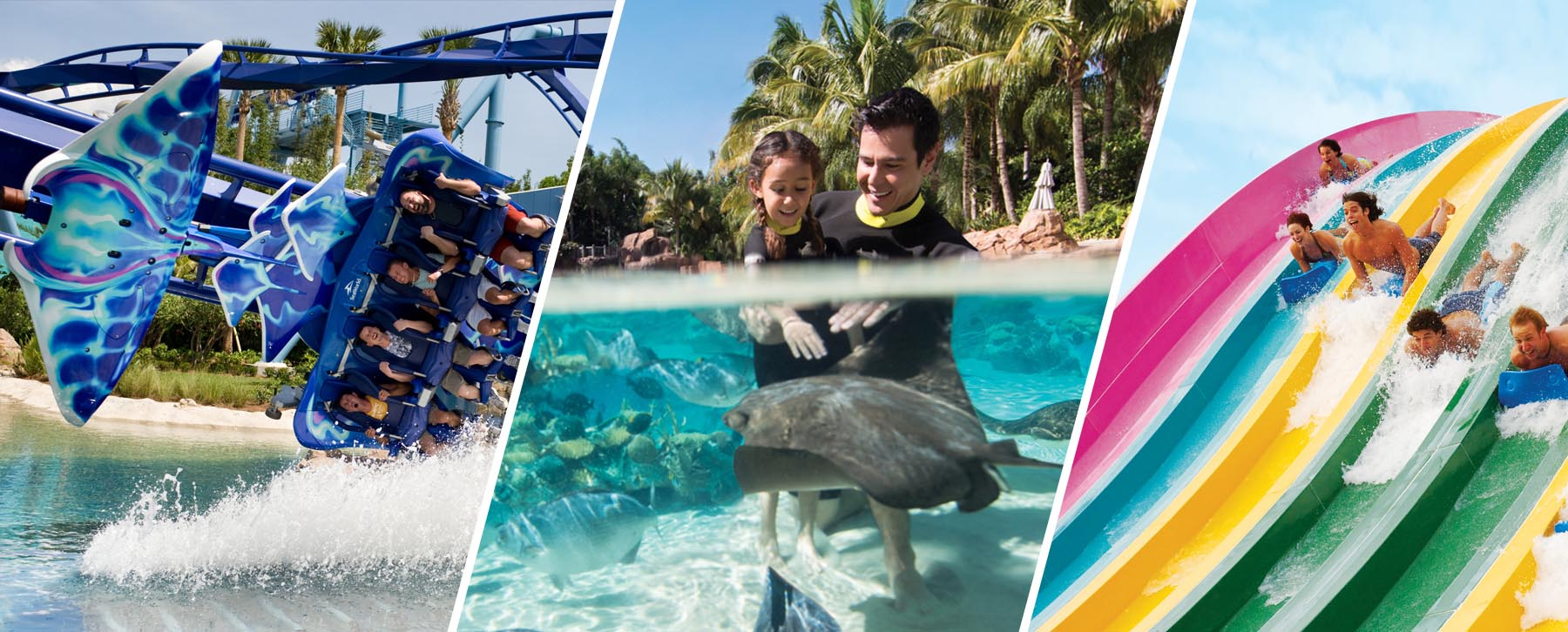 VIsit SeaWorld, Discovery Cove and Aquatica