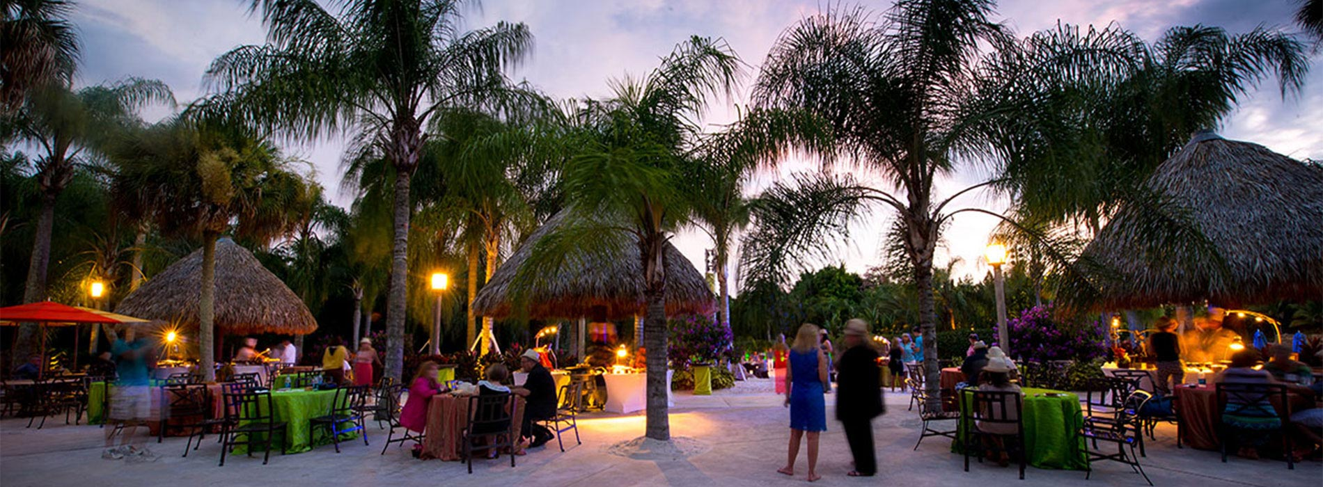 Group events at Discovery Cove