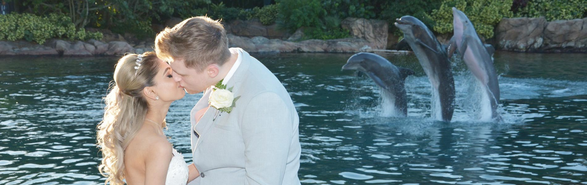 A wedding to remember at Discovery Cove Orlando