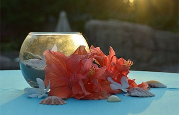 Weddings at Discovery Cove