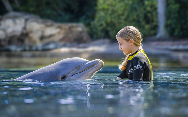 Discovery Cove Girl with Dolphin