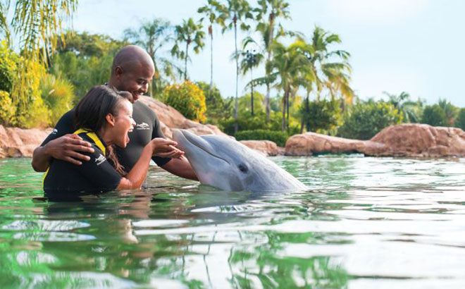 Dolphin Interaction at Discovery Cove.